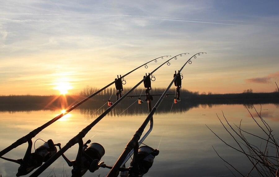 Ајде по риба!