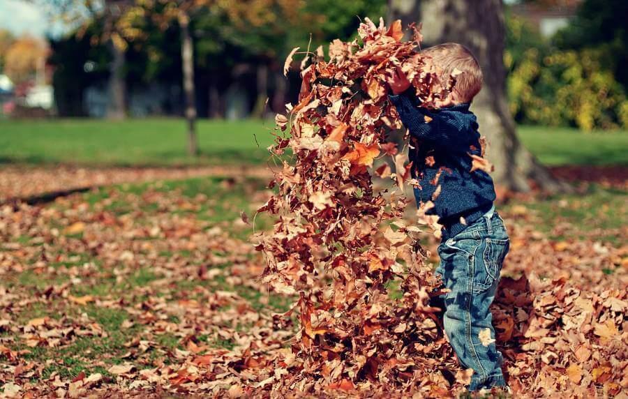 Есенски активности со твоето дете