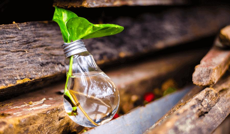 Помогни на Земјата - инвестирај во екологија и заштеди